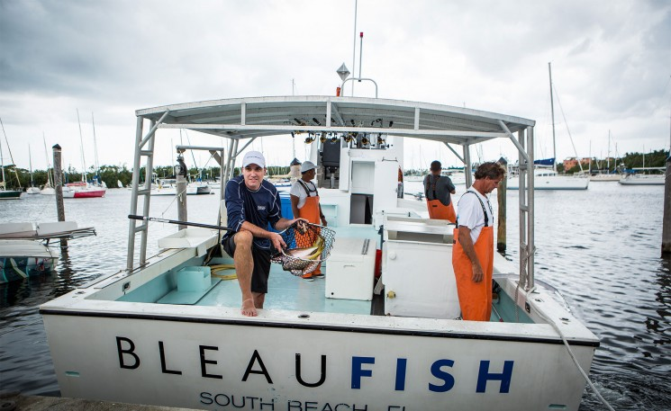 OCEAN TO TABLE SEAFOOD PROGRAM